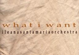 Ileana Santamaria – What I Want