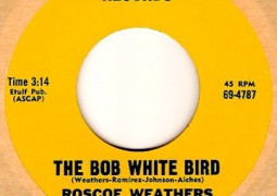 The Roscoe Weathers Orchestra – The Bob White Bird