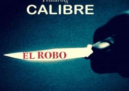 Danny G Felix & MALO MALO – El Robo