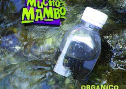 Mucho Mambo – Organico